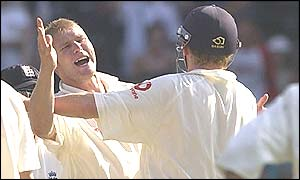 Matthew Hoggard is delighted after taking the wicket of Matthew Hayden