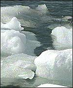 Melting ice floes in Antarctica