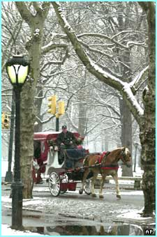 Tourists enjoy a winter tour around New York's Central Park