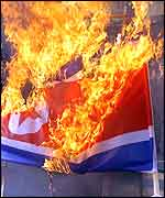 South Korean veterans burn a North Korean flag during a pro-US rally in South Korea (AFP)