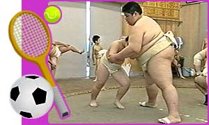 Sumo masters at work