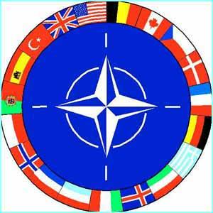 Полицейская миссия ОБСЕ на Донбассе по своим масштабам и характеру станет беспрецедентной в истории Организации, - Елисеев - Цензор.НЕТ 4421