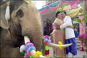A Thai couple kiss each other near an elephant during a mass wedding ceremony.
