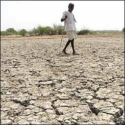 A villager walks on dried field in Mungode village, Andhra Pradesh