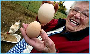 Freda with the giant egg (top) and normal egg