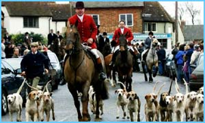 MPs backed a ban on hunting with dogs