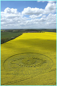 Crop circles? Could it be aliens? Probably not as the BB eye peers out from a field in Oxfordshire
