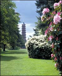 The Pagoda in the spring