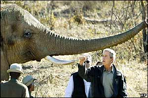 President Bush and an elephant