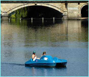 A bit of civilised pedal boating on the Serpentine in London's Hyde Park