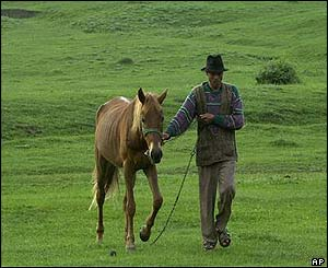 A Roma man leads his horse to pasture