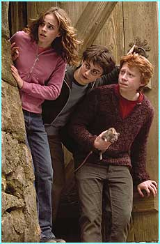 Hermione, Ron and Scabbers on the way to somewhere, maybe it's the Whomping Willow?