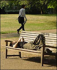 Man sleeping on park bench