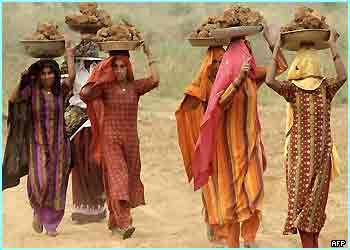 Indian village women carry trays of mud on their head. The mud will be used to spruce up their homes