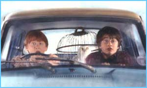Harry and Ron in The Chamber Of Secrets