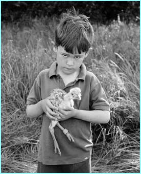 We think this kid is holding a baby emu, but maybe it's just a scrawny chicken - copyright Sue Packer