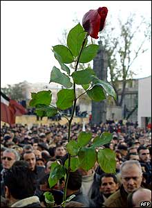 A red rose is held aloft during demonstrations calling for the president to go