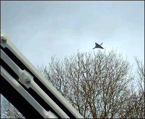 Concorde seen from the Clifton Suspension Bridge in Bristol, as photographed by a BBCi user
