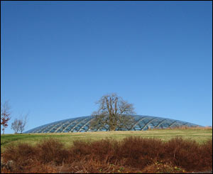 James Prout took this shot on a bright winter's day at the National Botanic Gardens in Carmarthenshire