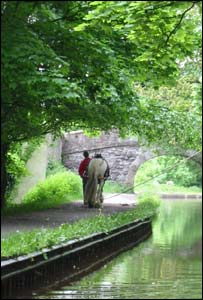 A horse-drawn barge on Llangollen Canal, as captured by Carl Rice, who is currently working in Atlanta