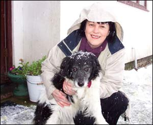 Wilf Jones of Brynrefail, Caernarfon sent this picture of his partner Janet with Sali, her 15-year-old sheepdog in the snow