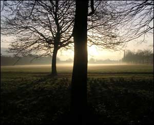 This photo of Roath Recreation Ground was taken by Margaret Salt early one morning on her way to work