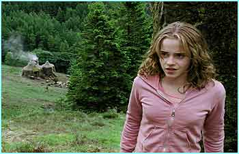 Hermione looks in confident mood, but then she has just punched Draco in the face!
