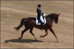 Ulla Salzgeber competes in the team dressage event