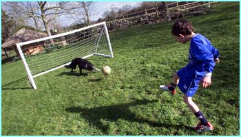 Here comes his owner's son James. James and his sister Kate taught Stanley his silky footie skills