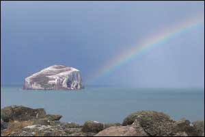 Somewhere over the rainbow.  Bass Rock taken by Neil MacLennan from the grounds of Tantallon Castle.