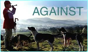 cbbc newsround fox hunting some people against hunting