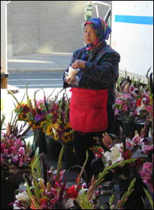 Hmong tradeswoman at weekly farmer's market