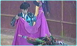 Picture of a bullfighter and a matador