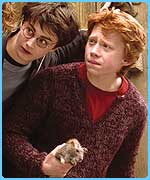 Dan Radcliffe as Harry Potter with Rupert Grint as Ron Weasley