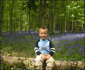 Geraint Edwards' son Dylan taken in the woods near their home in Penrhyncoch, Aberystwyth