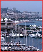 Boats in Cannes harbour