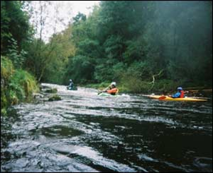 A canoe trip on the River Ystwyth, as sent by Jenny Bearcock
