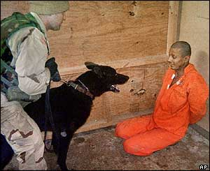 Soldier, dog and detainee (courtesy Washington Post)