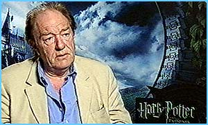 Michael Gambon plays Dumbledore