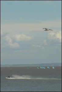 A seagull is caught flying above a jetski rider, taken from Penarth Pier (John Parker)