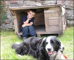 Pam Browne took this picture of JoJo in the doghouse in Upper Cwmbran
