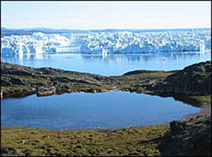 Ilulissat Icefjord in Greenland (courtesy of Unesco/IUCN)