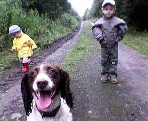 A wet summer walk in Penllergaer Forest, Swansea, with Hannah, Matthew and Meg the dog (Kerry Davies)