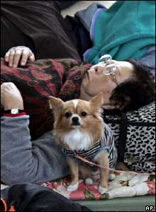 An elderly woman takes a rest with her pet dog in an evacuation centre in Nagaoka, northwest of Tokyo, Monday, Oct. 25, 2004.