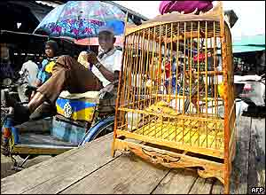 A Thai Muslim rickshaw driver waits for passengers next to a bird cage in the market of Narathiwat province, south Thailand 02 November 2004.
