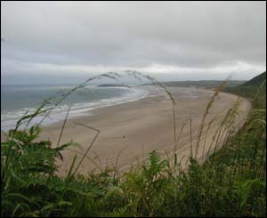 A view from the headland down to Rhosilli beach, sent in by David Clark from Swansea