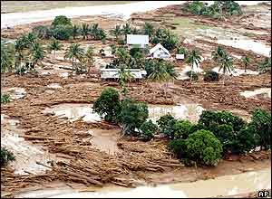 Uprooted trees littered near a swollen river after it was hit by a storm in Infanta town, Quezon province, eastern Philippines on Tuesday Nov. 30, 2004.
