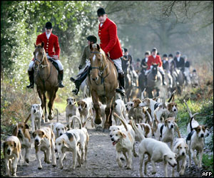 Hampshire huntsmen follow their hounds in the village of Herriard near Basingstoke.