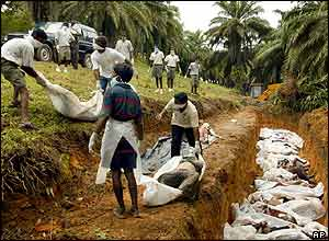 Government workers and volunteers pile unidentified bodies in a mass burial pit in Galle, Sri Lanka