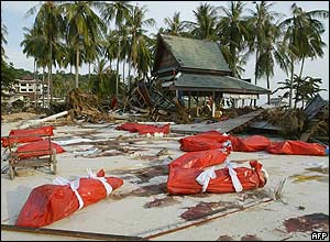 Bodies wrapped in red plastic bags await to be collected on Phi Phi island in southern Thailand